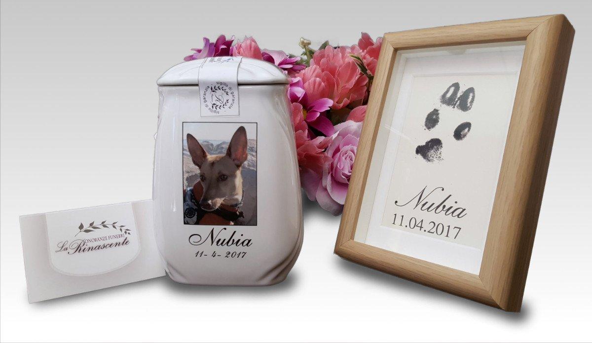 Cremazione animali domestici con restituzione delle ceneri